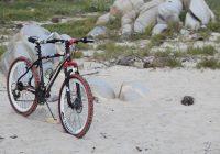 Masz problem z wyborem odpowiedniego roweru? Sprawdź!