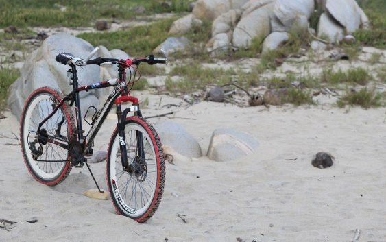 jaki rower